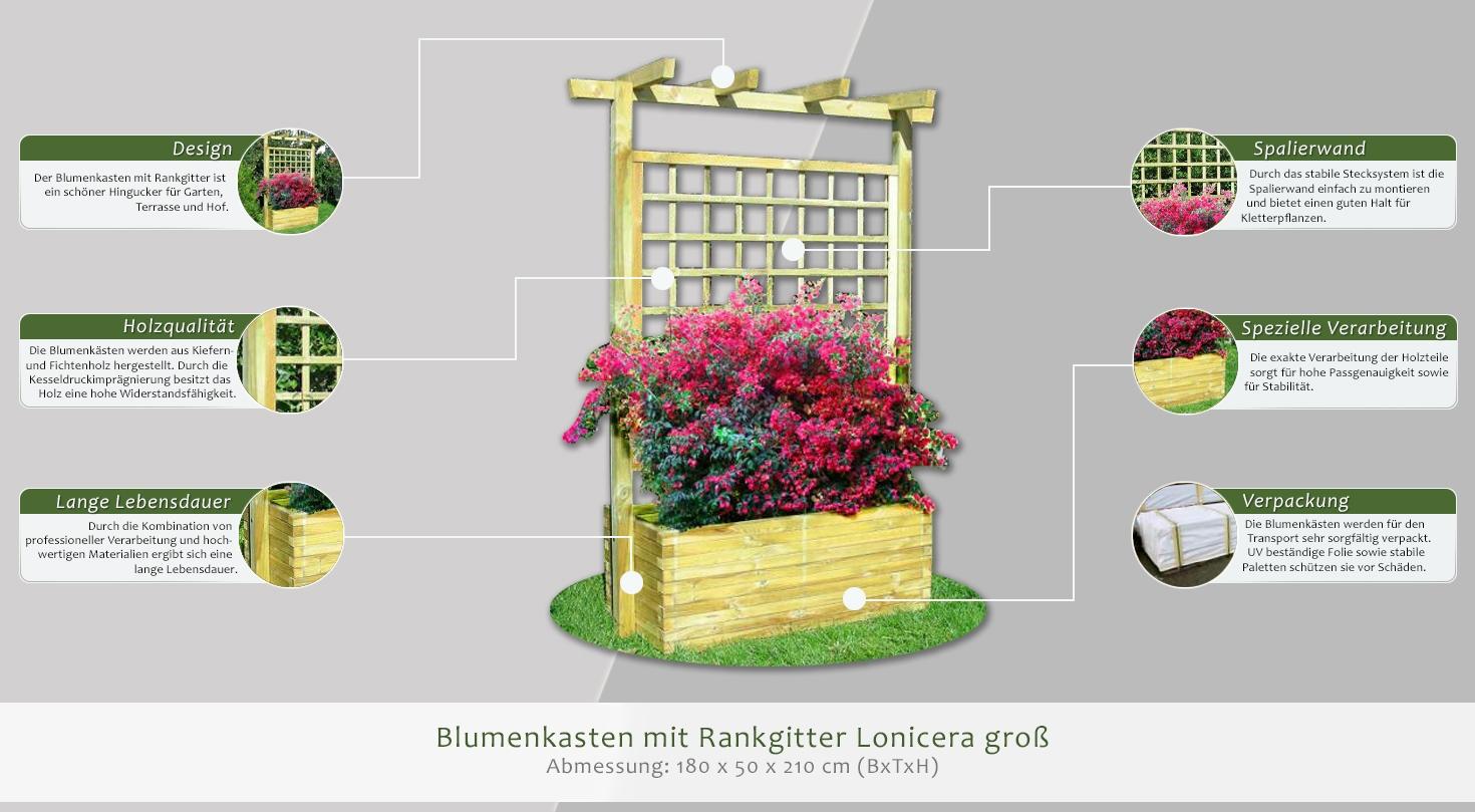 blumenkasten mit rankgitter lonicera gro abmessung 180 x 50 x 210 cm b x t x h. Black Bedroom Furniture Sets. Home Design Ideas