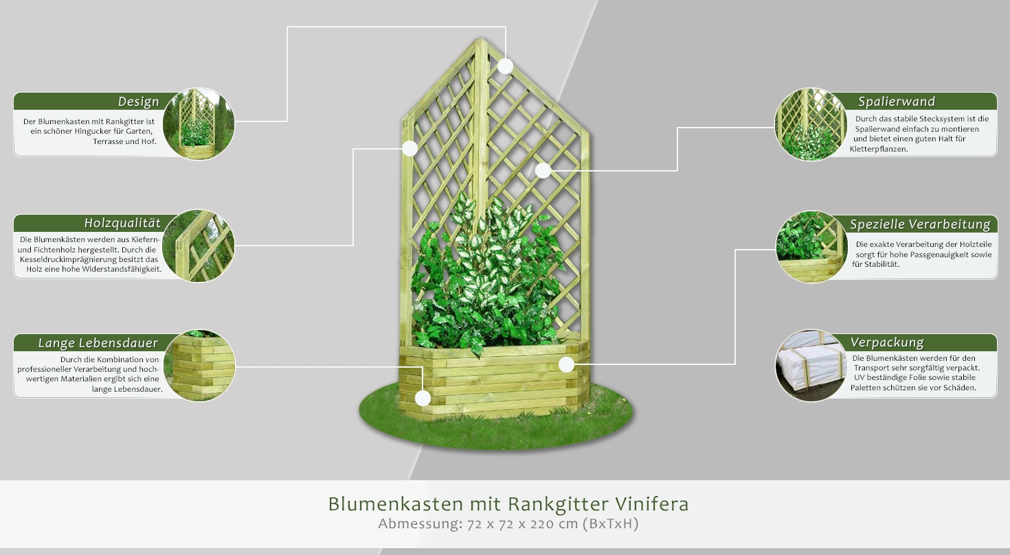 blumenkasten mit rankgitter vinifera abmessung 72 x 72 x 220 cm b x t x h. Black Bedroom Furniture Sets. Home Design Ideas