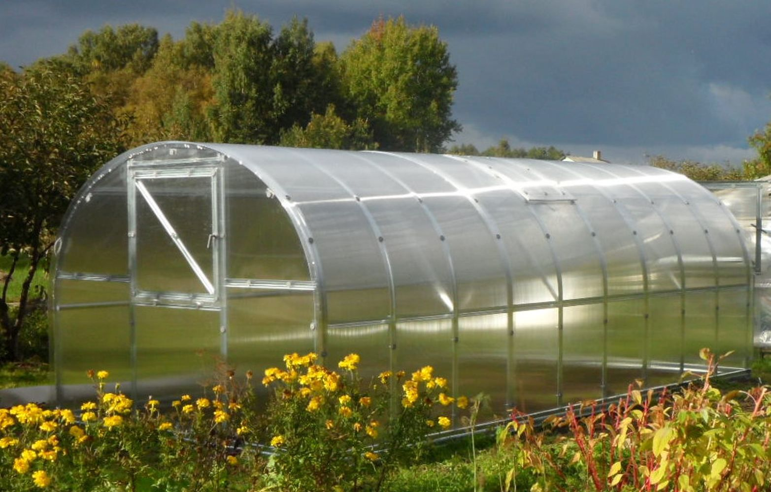 Gewächshaus 04 HKP 4 mm, Grundfläche 24 m²- Abmessungen: 800 x 300 cm (L x B)