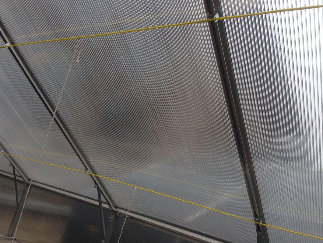 Haltevorrichtung für Pflanzen für Gewächshaus mit 600 cm Länge